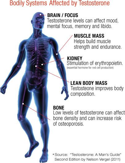 benefits of healthy testosterone levels
